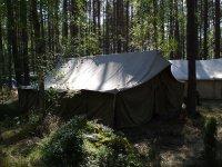 wgl.pl/category/skladnica-harcerska-umundurowanie-sprawnosci-harcerskie-i-zuchowe